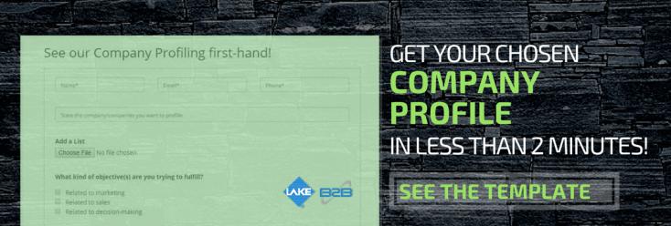Company Profiling Page Link 1