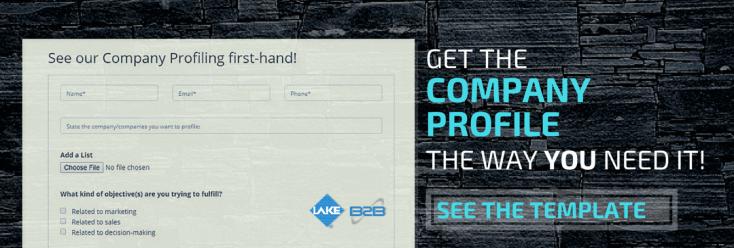 Company Profiling Page Link 2