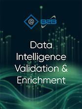 Data Intelligence Multichannel Marketing